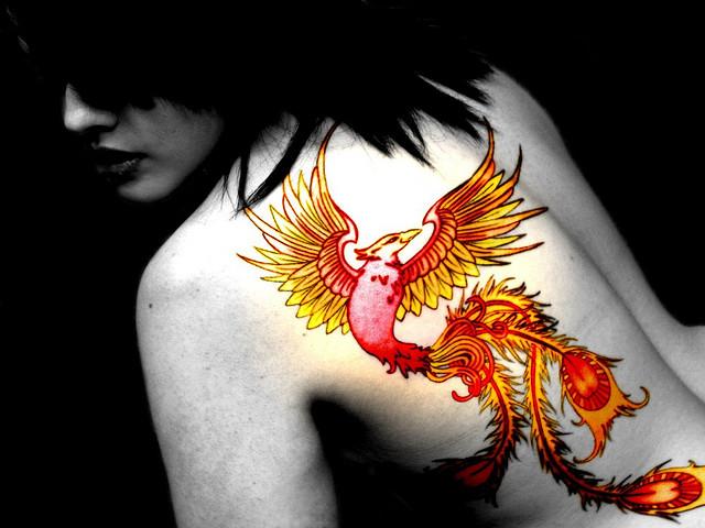 fonix-madar-tetovalas