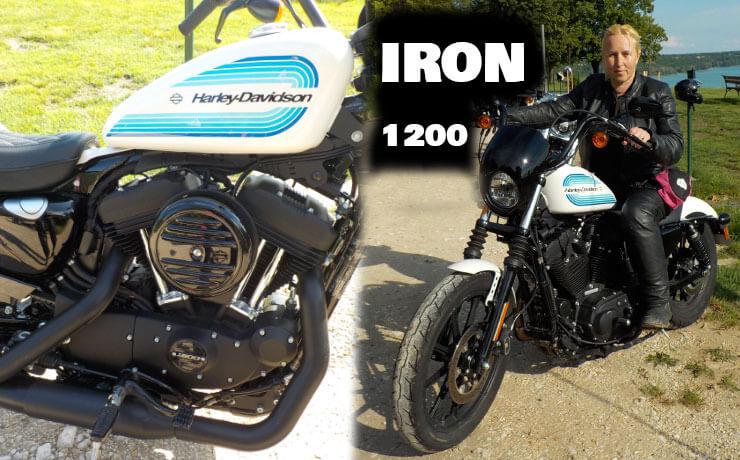 harley davidosn iron 1200 2019 cim